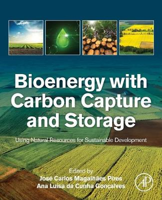 Bioenergy with Carbon Capture and Storage: Using Natural Resources for Sustainable Development