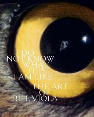 I Do Not Know What It Is I Am Like: The Art of Bill Viola
