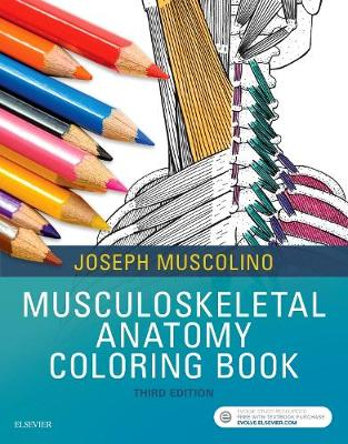 Musculoskeletal Anatomy Coloring Book 3rd Revised edition