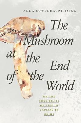 Mushroom at the End of the World: On the Possibility of Life in Capitalist Ruins