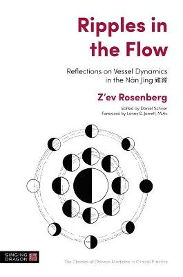 Ripples in the Flow: Reflections on Vessel Dynamics in the Nan Jing