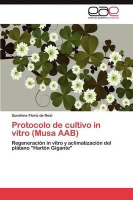 Protocolo de Cultivo in Vitro (Musa Aab)