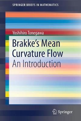 Brakke's Mean Curvature Flow: An Introduction 1st ed. 2019